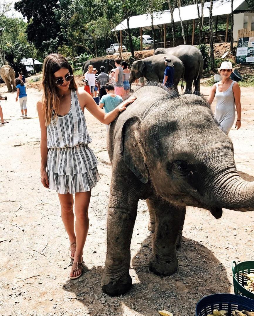 BFF's 💘🐘 #i❤️thailand #elephant #thailand #phuket #rescue #whatiwore #ootd #travelblog #travelblogger#blogger #pinterest #inspo #fashionblogger #blog #fashionblog #instablog #instafashion #outfitinspo #instastyle #ootdmagazine #igstyle #styleblogger #instagood #personalstyle #wiw #igfashion #hairinspo #ombre