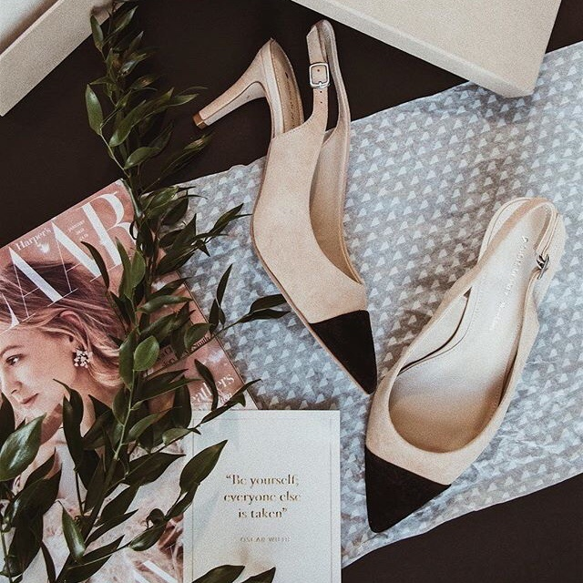 Tha classic cap toe pump that can't miss your wardrobe this upcoming spring. 😍  @shoesofprey #captoeshoes #fashion #fashionblog #eyecandy #kittenheels #slingback #newshoes #springfashion #spring2018 #stylish #classy #wardrobeessentials