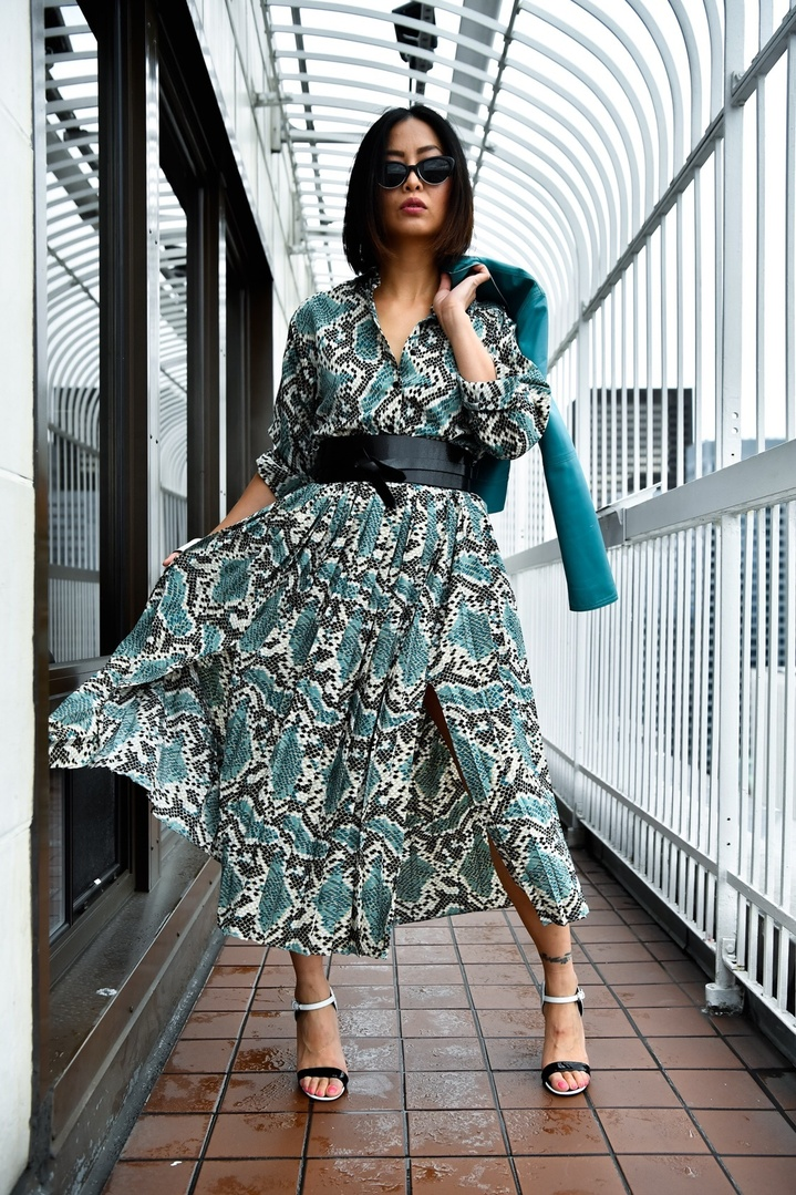 Got that animal instinct 🐍!   Checkout the latest #seattlestylelogue July Issue: Uncaged Animal Print up on the blog - link in bio!  Oh did I mention the teal leather jacket was thrifted from @seattlegoodwill a brand named #classiquesentier from @nordstrom I used to design?   📷 @atomic80   #topshopdress #snakeprintdress #julyissue #stylelogue #uncagedanimal #animalprint #nanoinfluencer #eforelisa #seattlestyle #seattleblogger #smithtower #obibelt #seattlegoodwill  #thriftedfashion