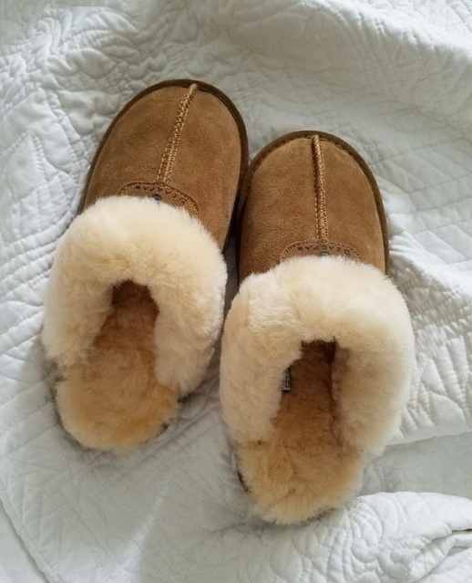 Ugg slippers cost! #ShopStyle #shopthelook #MyShopStyle #slippers #bearpaw #houseslippers #affiliate #favorites #comfy #cozy