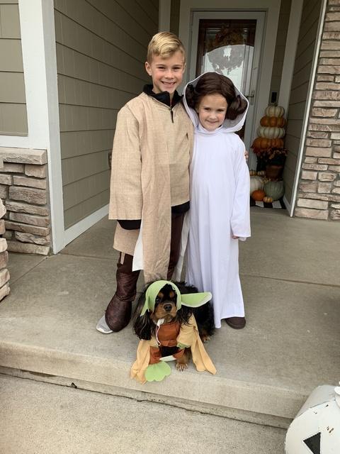 kids for Halloween  #justpostedblog #ShopStyle #shopthelook #MyShopStyle #OOTD #LooksChallenge #ContributingEditor #Lifestyle